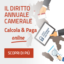 banner diritto annuale online